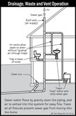 Home Inspection Plumbing System